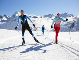 differences between the downhill ski and the cross country ski