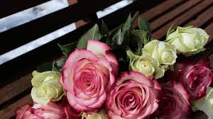 flower delivery new orleans flower delivery new orleans call now 504 322 3669