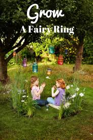 Fairies For Garden Decor Best 25 Fairy Ring Ideas On Pinterest Faeries Moon Gate And