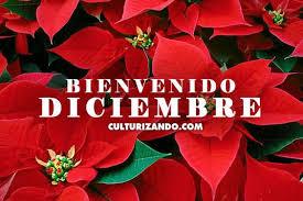 imagenes hola diciembre imágenes de hola bienvenido diciembre para compartir todo imágenes