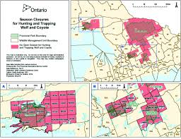 Algonquin Map Wolf U0026 Coyote Hunting And Trapping Ban Ontario Federation Of