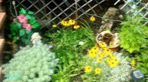 cottage vegetable garden series 2015 full plant harvest youtube