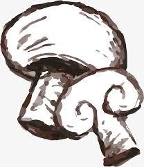 sketch mushroom vector hand sketch mushroom png and vector for