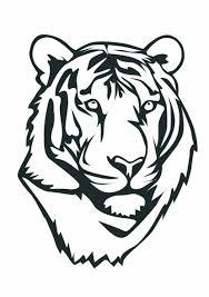 easy tiger face sketch drawing art ideas