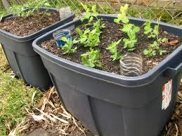 Self Watering Planters Self Irrigating Planters Made Easy Apron Stringz