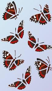 admiral butterfly stencil 2 henny donovan motif