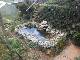 How To Make Backyard Pond by How To Build A Pond Info Turtle