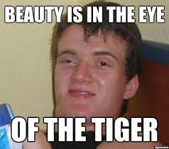 Eye Of The Tiger Meme - 10 guy on beauty weknowmemes