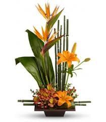 flowers for men grace 99 99 for men flowershop