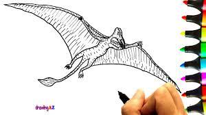 how to draw rhamphorhynchus dinosaur and rhamphorhynchus coloring