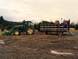 tree farm live trees tunkhannock pa