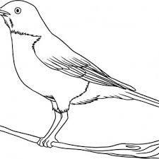 tag for draw pictures of birds bird drawing by eleihna on