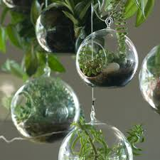 Large Round Glass Vase Decor Diy Hanging Terrarium For Home Accessories Ideas