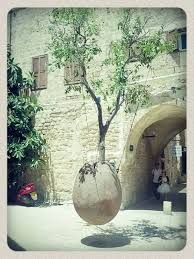 cremation tree goodbye coffins these organic burial pods will turn you into a