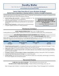 senior executive resume executive resume sles top resume sles professional resume