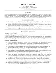 executive summary example for resume credit manager resumes dottiehutchins com best solutions of credit manager resumes in download resume