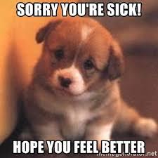 Sick Puppy Meme - sorry you re sick hope you feel better cute puppy meme generator