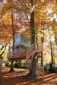 Treehouse Nz 168 Best Tree Houses Images On Pinterest Treehouses Tree Houses