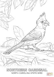 tweety bird coloring pages north carolina state bird coloring page free printable coloring