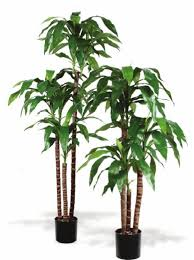 Home Decor Artificial Trees Artificial Trees And Artificial Plants From Artificial Bloom