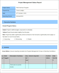 report to senior management template report to senior management template 4 professional and high