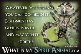 spider quotes u0026 sayings animal quotes u0026 sayings