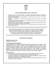 Free Sales Resume Templates  senior sales executive resume  resume       car