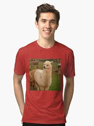 Alpaca Sheep Meme - doge meme alpaca tri blend t shirt by memesense redbubble