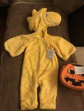 Snoopy Woodstock Halloween Costumes Pottery Barn Polyester Halloween Costumes Ebay