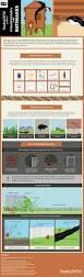 Backyard Chicken Processing by Poultrydvm Biosecurity Tips For Backyard Poultry Poultrydvm