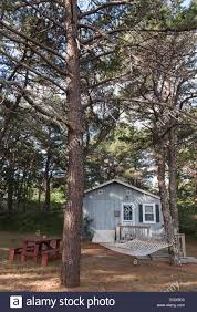 vacation rental cabin in the woods on cape cod massachusetts