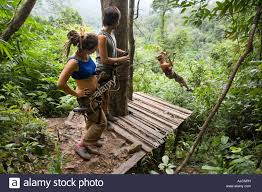 tourists zip lining from tree house to a landing platform