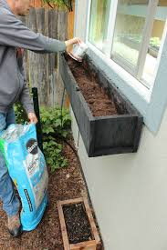 step by step guide to planting a window box step guide window
