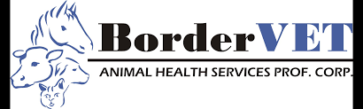 bordervet animal health services veterinarian in carnduff