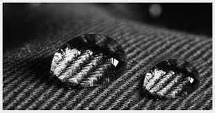 Car Interior Upholstery Cleaner Scotchgard Upholstery Cleaner Review How To Clean Car Upholstery