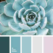 195 best images about colour board on pinterest