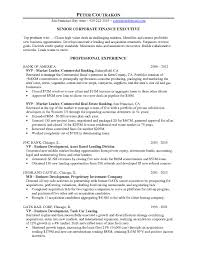 beautiful accounting auditor cover letter pictures podhelp info