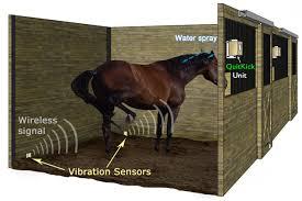 Stall Door How Quitkick Works