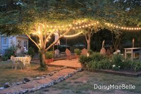 Fire Pits For Backyard by Backyard Fire Pit Daisymaebelle Daisymaebelle