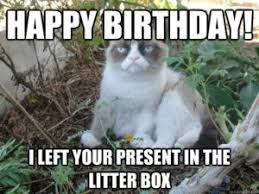 Grumpy Cat Meme Happy - grumpy cat happy birthday memes happy birthday cat meme