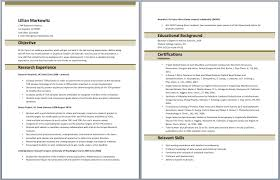 Clinical Research Coordinator Resume Research Project Coordinator Resume A Dream World Essay