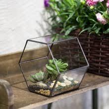 popular geometrical glass terrarium buy cheap geometrical glass