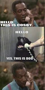 Yes This Is Dog Meme - 8 best hello yes this is dog images on pinterest funniest