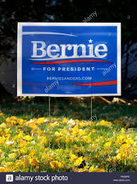 2016 us presidential campaign yard sign for bernie sanders stock