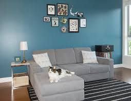 gray colors paint colors that match this apartment therapy photo sw 6988
