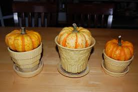 decorate and cook with gourds pumpkins and winter squash 2