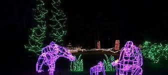 Zoo Lights Woodland Park 12 December Archives Go Strollers