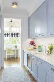 white kitchen cabinets yes or no pantry room entrance door yes or no kitchenpantrycabinets
