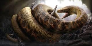 film ular download download film ular anaconda kudo shinichi e no chousenjou episode 9