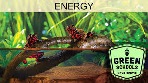 healthy ecosystems u0026 energy ppt download
